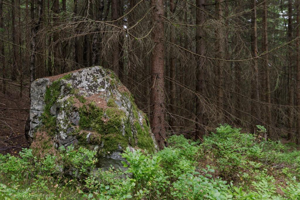 Nordre Kolsås